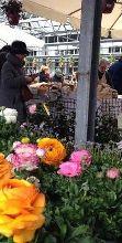 Il mercato agricolo dei Giardini Galbiati