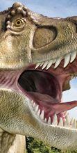 The World of Dinosaurs: la preistoria vive a Cassano delle Murge