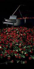 Concerto dei pianisti Alexander Lonquich e Cristina Barbuti
