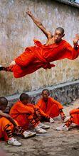 Gli scatti di Steve McCurry in mostra a Pordenone
