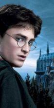 Harry Potter al Castello della Mandria