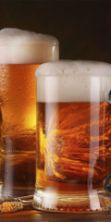 Festa della Birra di Spresiano