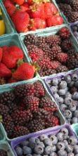 Mercato del contadino - Colori e sapori di Ferrara