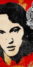 Concerti estivi per Finardi, 40 anni di musica ed emozioni