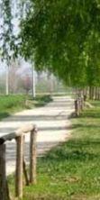 Primo maggio al Parco Fluviale di Lastra a Signa