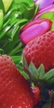 Francavilla, fiori e fragole!