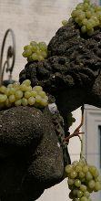 Via alla 91ma Edizione della Sagra dell'uva a Marino