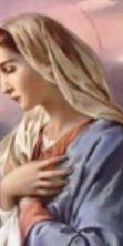 La festa della Madonna del Rosario 2016