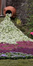 San Pellegrino in fiore: torna il tradizionale appuntamento per gli amanti dei fiori