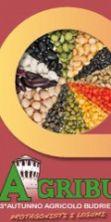 Agribù 2016, l'autunno agricolo budriese. Protagonista di questa edizione il pane