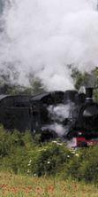 Scoprire la Toscana con i viaggi del Treno Natura