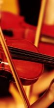 Chamber Orchestra of Europe in concerto