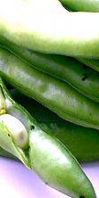 Sagra delle fave, appuntamento da leccarsi i baffi