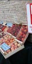 Sagra della frutta