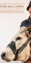 Mostra nazionale dei bovini di razza piemontese