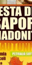 Festa dei Sapori Madoniti 2016