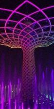 Riapre Expo tra cibo, sport, musica e arte: tutto gratis