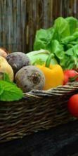 Far crescere in forma i bambini: sviluppo dell'intelligenza motoria e corretta alimentazione