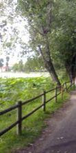 Roundabike, bici & dintorni nel cuore del parco del Mincio