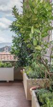 Un Giardino in Palazzo: la natura a Palazzo vecchio