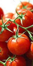 Sagra del Pomodoro