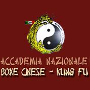 Palestra di Accademia Nazionale Boxe Cinese - Palestre e fitness Ariccia