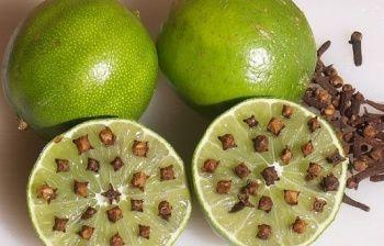 Zanzare: 5 rimedi naturali per eliminarle definitivamente