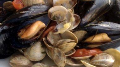 I molluschi possono trasmettere tumori agli esseri umani?