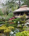 Visite gratuite al Giardino dell'Istituto Giapponese di Roma