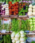 Biopertutti, il mercatino dei prodotti biologici