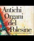 Antichi Organi del Polesine, un patrimonio da scoprire ed ascoltare