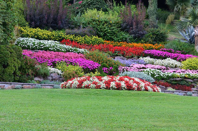 Charming Parchi Fioriti E Orti Botanici