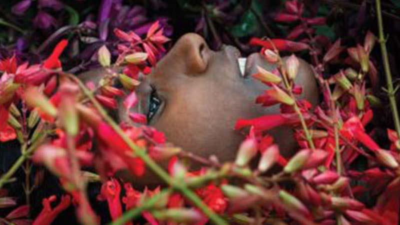 Orticolario: a Cernobbio il paradiso di piante e giardini