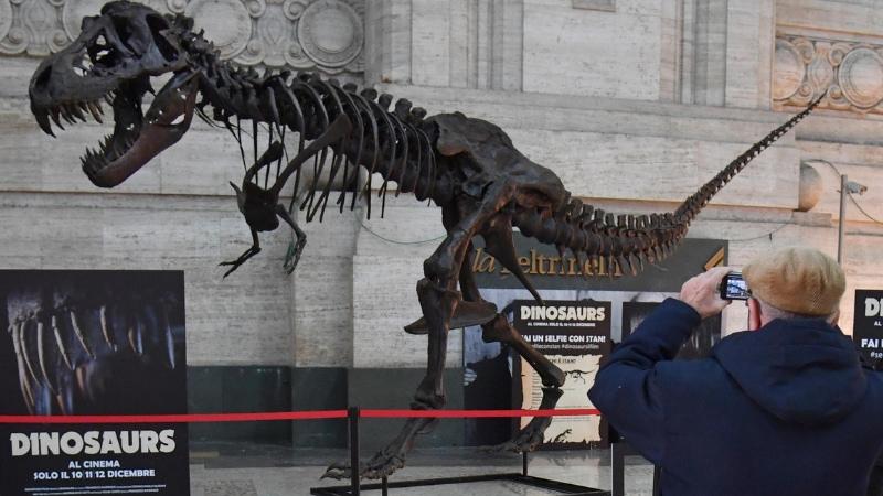 Un grande T- Rex in Stazione Centrale