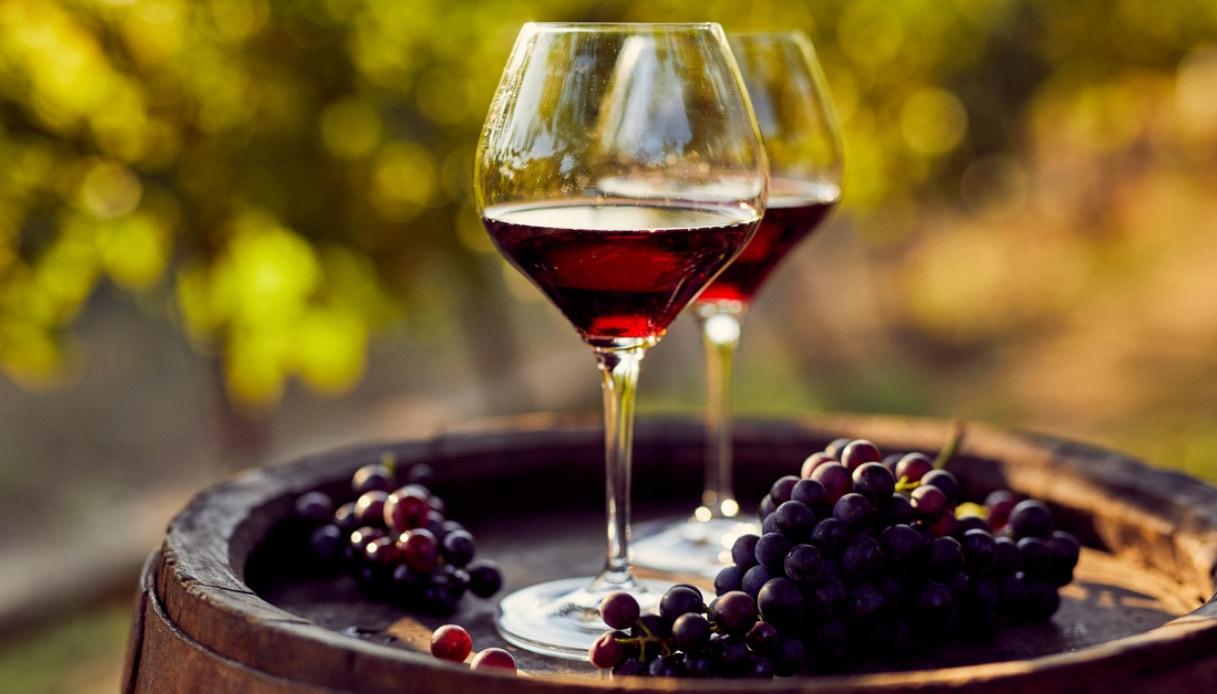 Nasce il vino di Leonardo da Vinci
