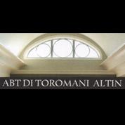 Abt Controsoffitti e Cartongesso - Soffittature e controsoffittature Lugo