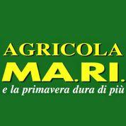 Agricola Ma.Ri Giardinaggio e Irrigazione - Macchine agricole - commercio e riparazione Roma