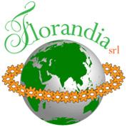 Florandia - Fiori e piante - vendita al dettaglio Firenze