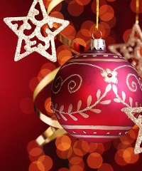 I Giardini Di Natale A Lodi Mercatini E Prodotti Tipici 6237459 6 Il