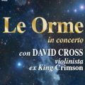 Le Orme con David Cross