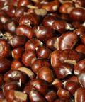 Festa delle castagne e del miele di castagno