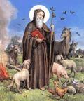 In festa per Sant'Antonio Abate
