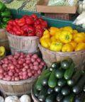 Festa dell'agricoltura a Resiutta
