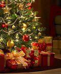 Fiera dell'albero di Natale