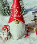 La Casa di Babbo Natale, il musical