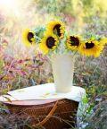 Primaveranda, la festa dedicata all'ambiente