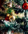 Fiera degli Alberi di Natale 2018