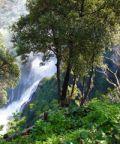 Giornate FAI di Primavera: alla scoperta del Parco Villa Gregoriana di Tivoli