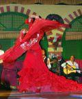 Ballet Flamenco Espanol porta sul palco