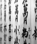 Calligrafia giapponese: introduzione all'arte dello shodo